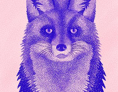 Animal Portrait Series
