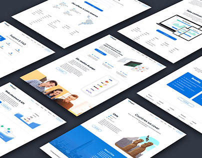 """Paygol"" Website Design and Development"