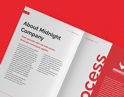 Midnight Security Solution - Branding Identity Design