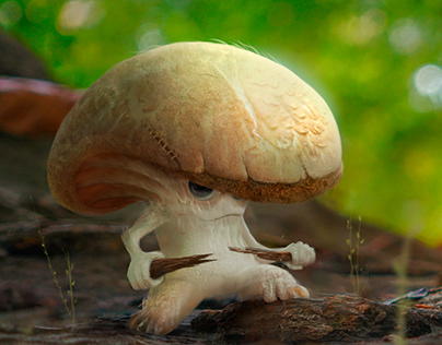 Mushroom Fighter