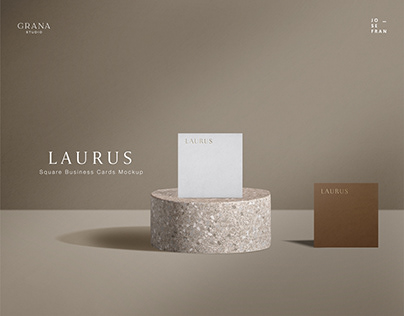 Square Business Card Mockup Kit