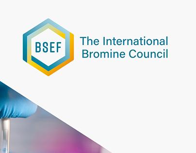 BSEF - Branding Identity