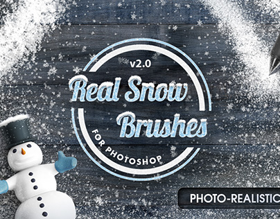 Real Snow Brushes