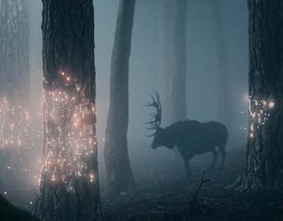 Fireflies | Solita