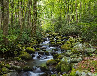Streams and Waterfalls
