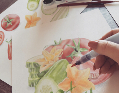 Watercolor Vegetables and Fruits Illustration