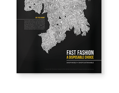 Fast Fashion: A Disposable Choice