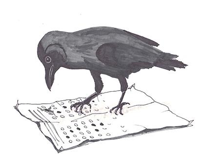 Multiple-Choice Crow