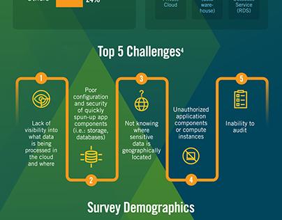 AWS Survey Infographic