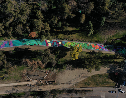 Murales - Apertura Parquemet Post Covid-19