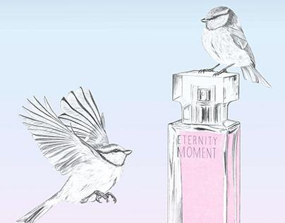 Fragrance illustration Calvin Klein