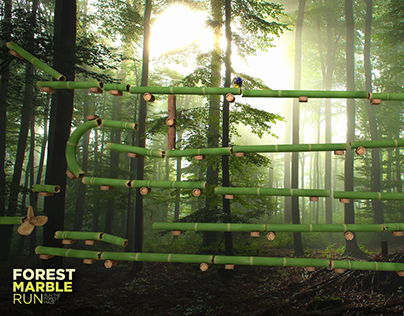 Forest Marble Run