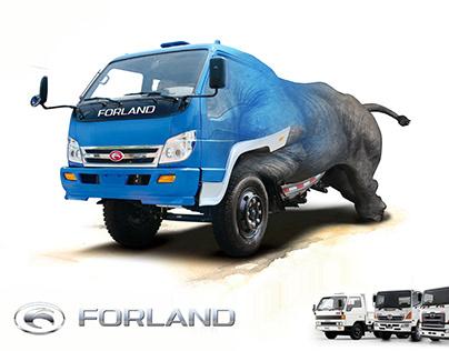 Forland