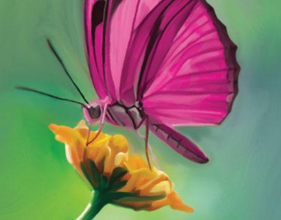 Farfalla WInes