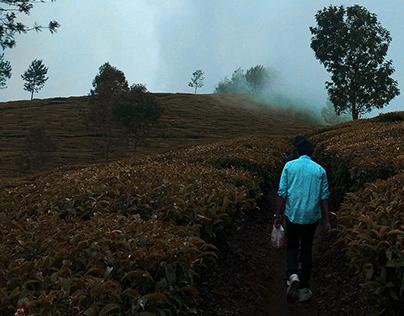 Kotagiri, silence of the hills.