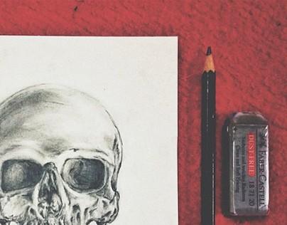 Sketch & Drawings ( 2014 - 2015 )
