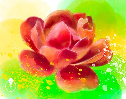 Summer Rose digital painting