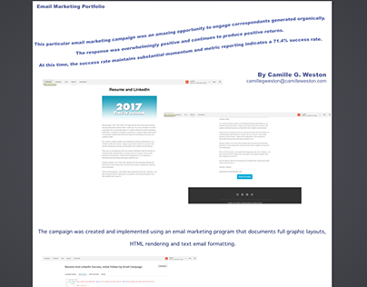 Email Marketing Campaign - Metrics Success Rate 71.4%
