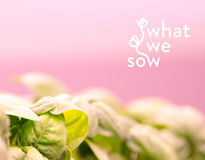 What We Sow