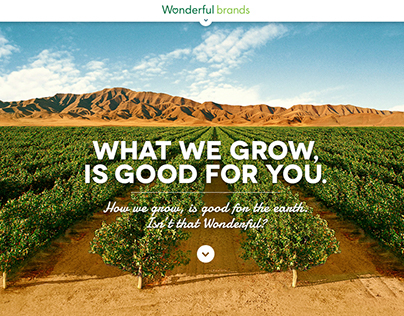Wonderful Brands website