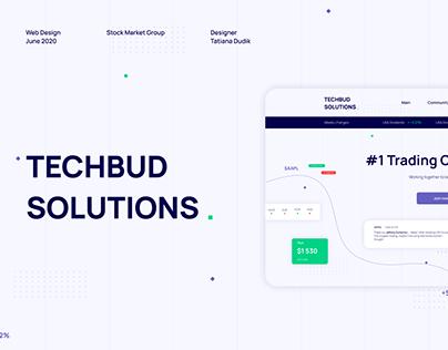 Techbud Solutions Web Design - Fintech Company