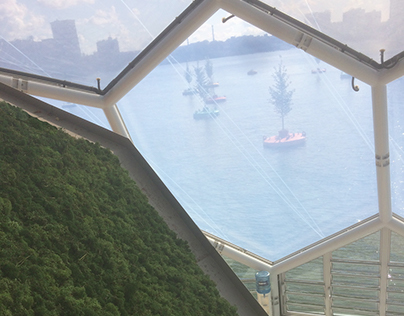 A green roof for the Floating Pavilion.