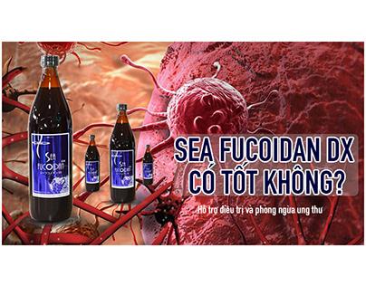 [REVIEW A-Z] Sea Fucoidan Dx có tốt không?