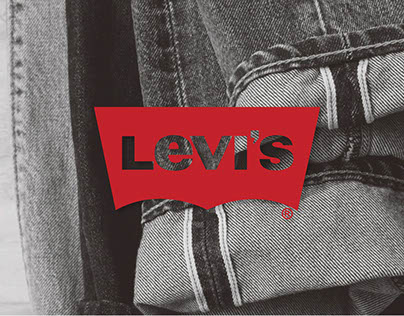 LEVI'S Investment Pitch