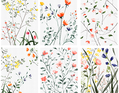 Flower illustrations/personal work