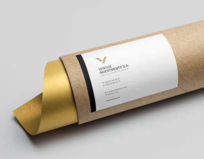 Ventus — Visual identity of the brand