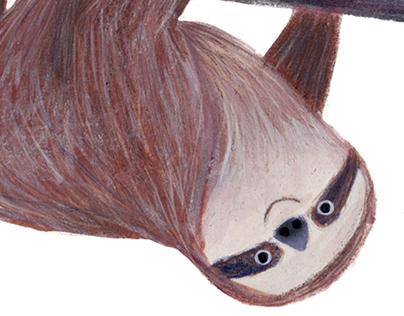 Take it sloth