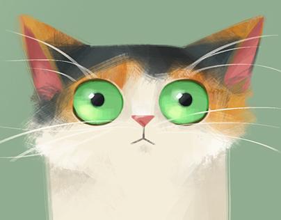 Cuki the Kitten