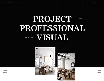 Project professional visual