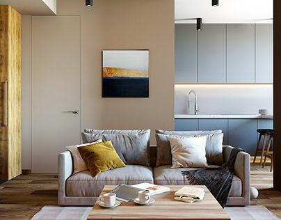Interior design of a small Studio