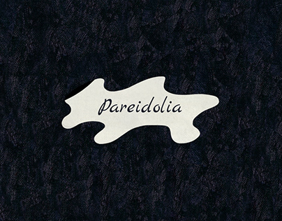 Pareidolia | picturebook