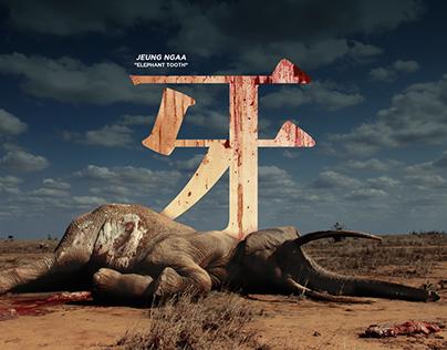 WWF | The Last Word