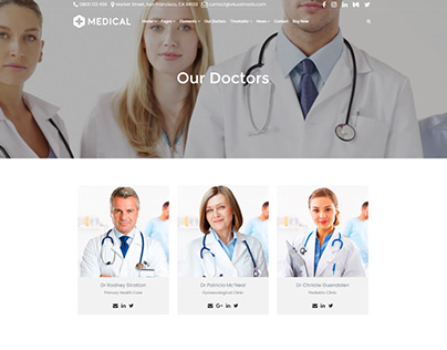 Our Doctors Section - Medical WordPress Theme