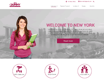 Big Dummy Consulting UI Website Layout Design