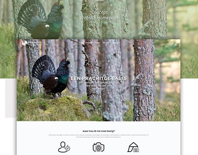Wildlife Photographer Portfolio - Website concept
