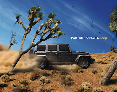PLAY WITH GRAVITY (Jeep)