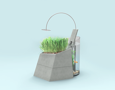 Miniaquaponics: a desktop aquaponics system