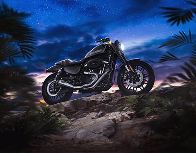 Harley Davidson Roaster 1200