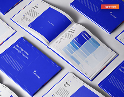 Exclusive 65-Page Style Guide Kit | Download Template