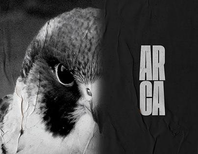 Ecosistema de Diseño ARCA