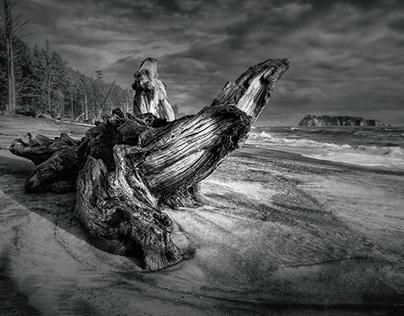 The Ephemeral Shore