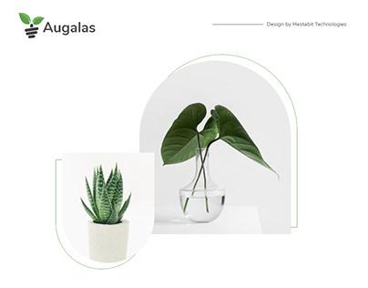 Plant Selling Website Design