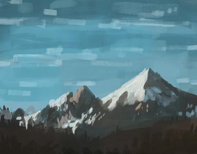 timed landscape studies