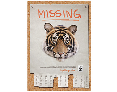 MISSING-posters for Master's thesis