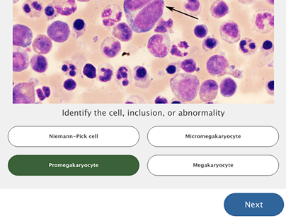 Interactive Hematology App+Web