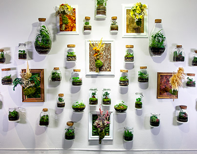 Installation | Gift of nature